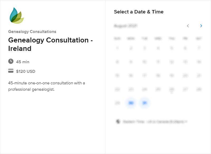 Schedule an Ireland Consultation