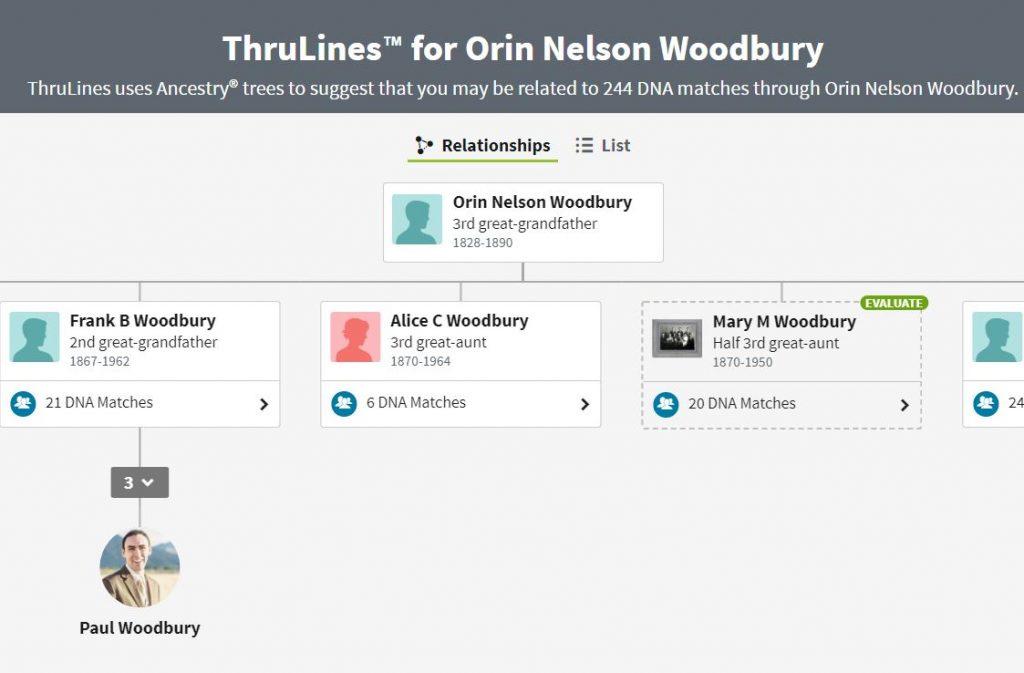 Ancestry DNA ThruLines