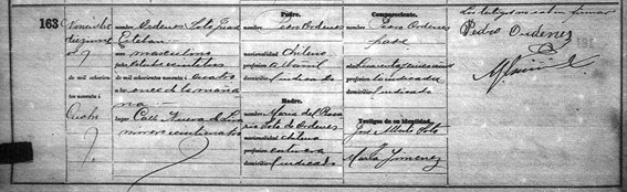 Chilean Birth Record