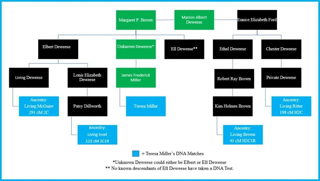 Chart DNA Matches