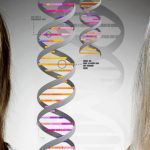 Pursuing a Career in Genetic Genealogy