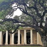 Legacy Tree Onsite: Spotlight on the Hawai'i State Library