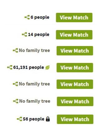 understanding AncestryDNA matches