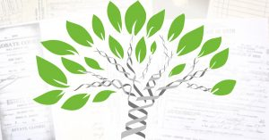 confirm genealogy research with DNA
