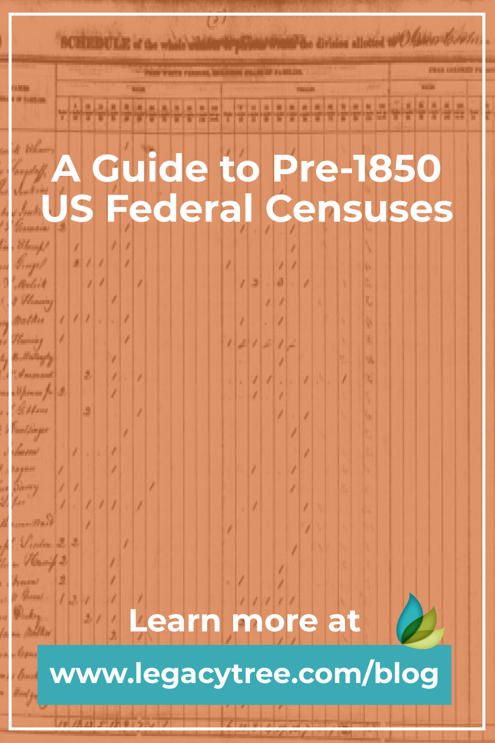 This guide will discuss what kind of information you can expect to find in pre-1850 US Federal Censuses and how to use those documents in your own research.